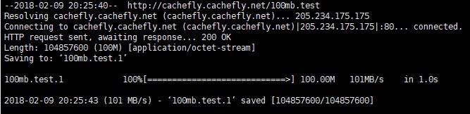 HostVenom 100M 測試