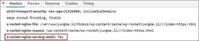 WP Rocket-conf debug